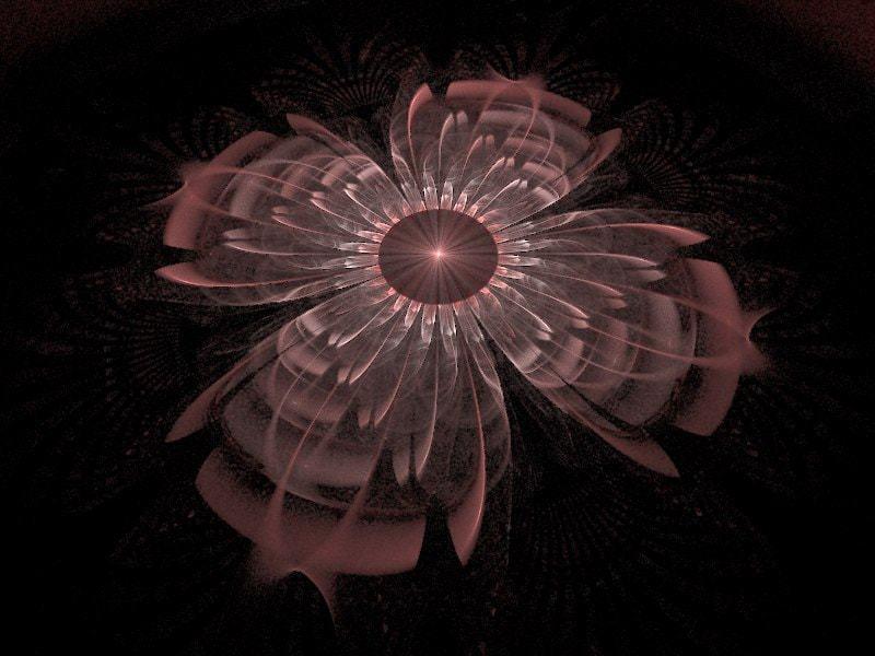 Zsuzsas Flower3D