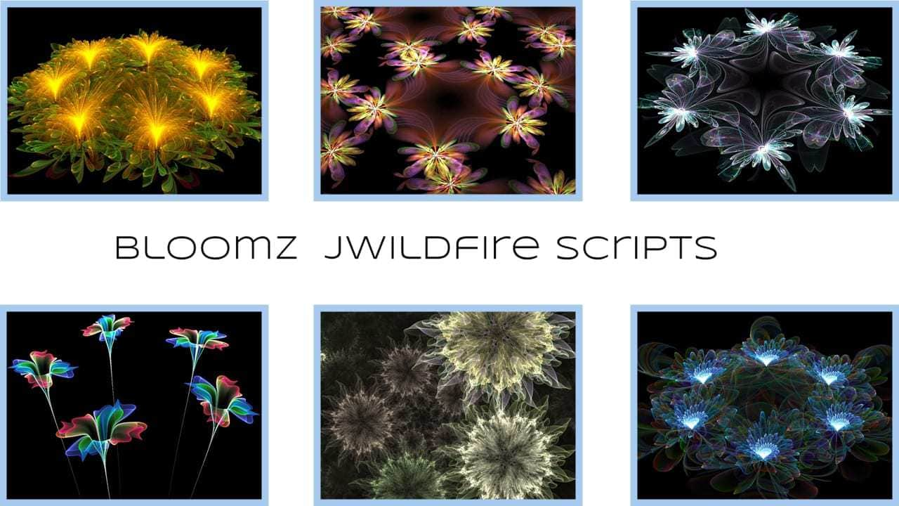 My script collection based on all things flowery, there are flower transforms in JWildfire, but for the...