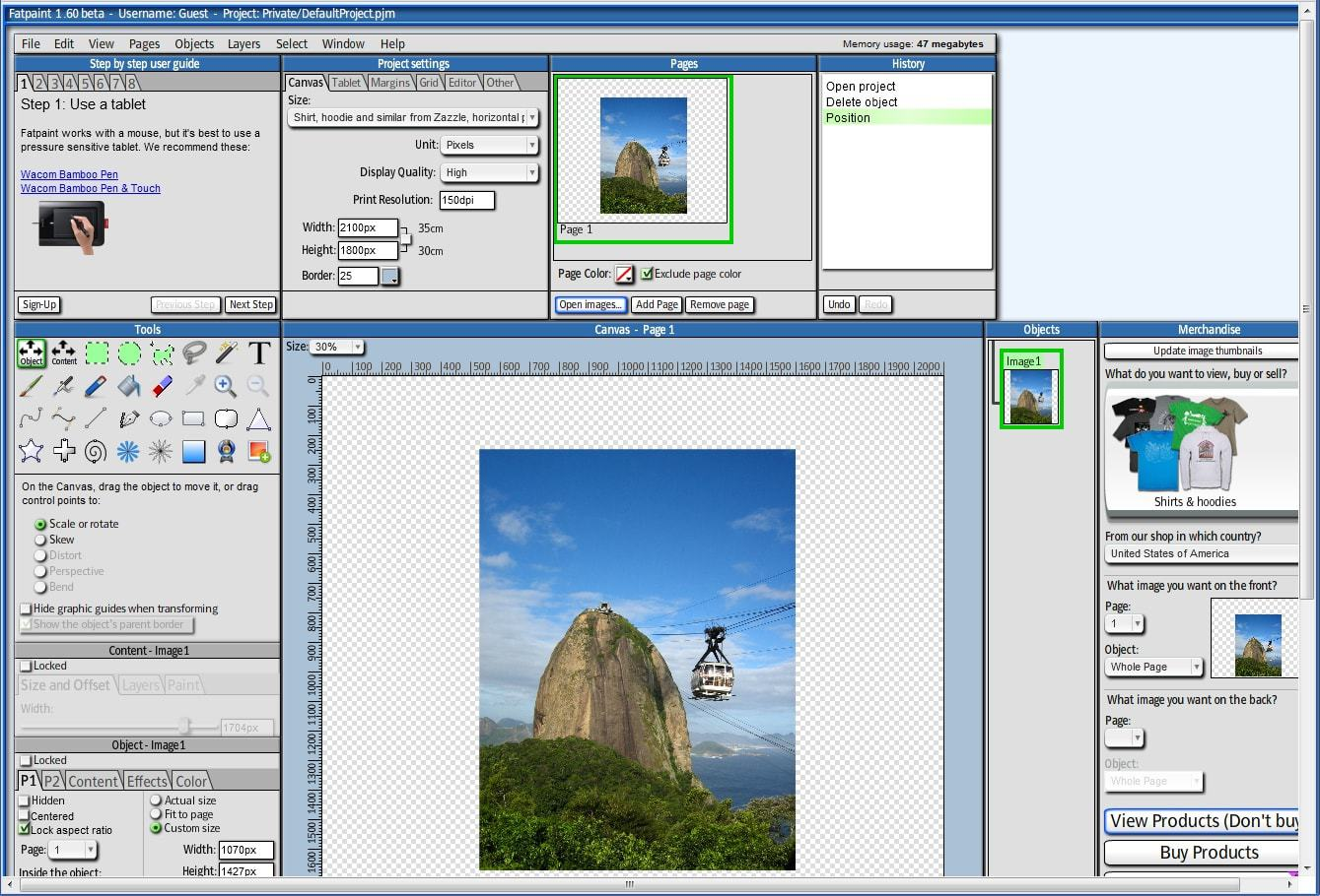 Fatpaint editor