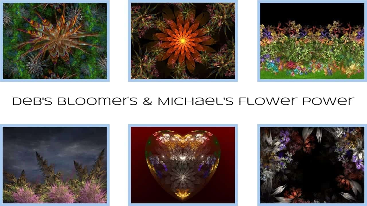 Debs Bloomers and Michael's Flower Power DO NOT USE IMPORT ZIP FACILITY TO INSTALL THESE!  See instructions...