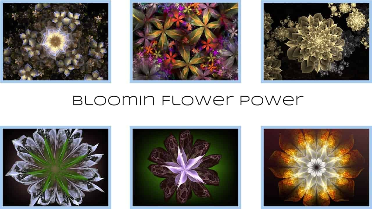 BloominFlowerPowercover1 | Bloomin Flower Power - By Michael Bourne and Mi Mi