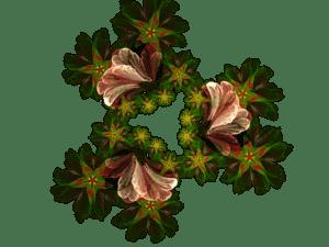 Flowers 2b | Flowers 2b
