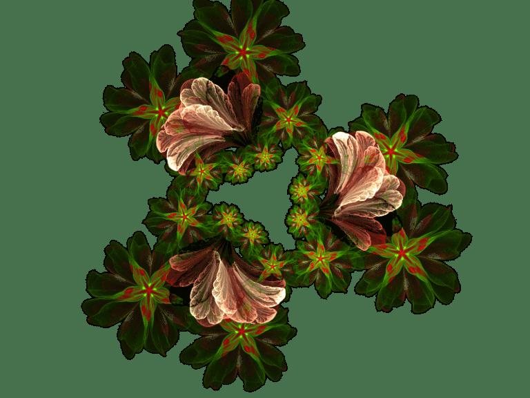Flowers b