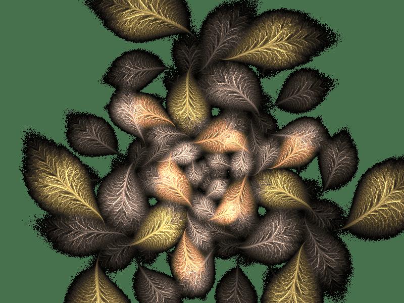 Flowers leaves 1   Flowers + leaves 1