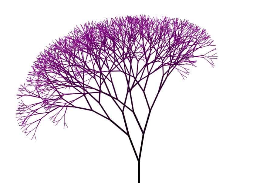 fractal tree   Fractal Tree