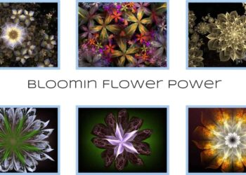 Bloomin Flower Power - By Michael Bourne and Mi Mi