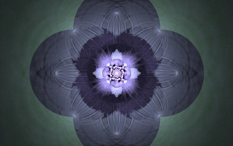 Julia Flower Image