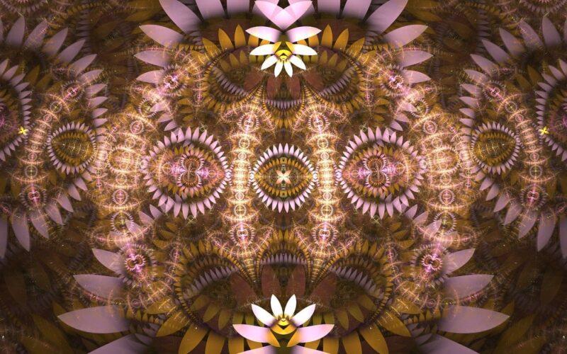 Logs Splits Sphericals Curls - Antoine Nehme Image