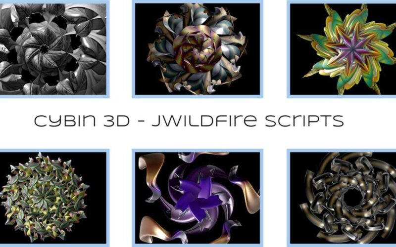 Cybin 3D Scripts Image