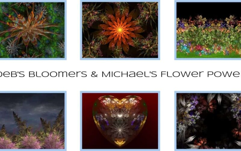 Debs Bloomers and Michaels Flower Power Image